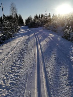 hiihtolatu-skiing-trail